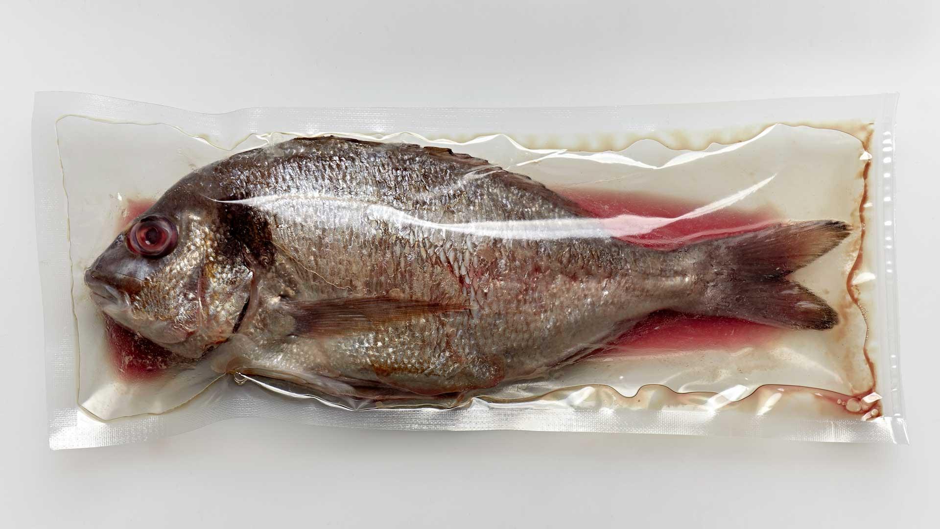Fisch in Plastik